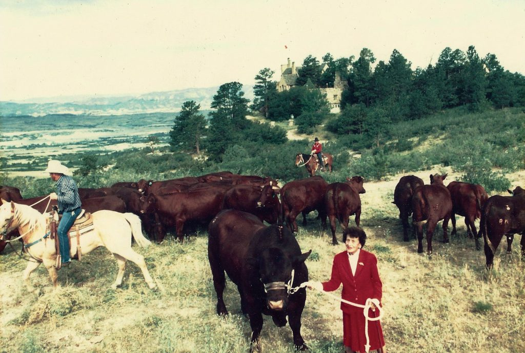 Tweet Kimball on her land with her cows