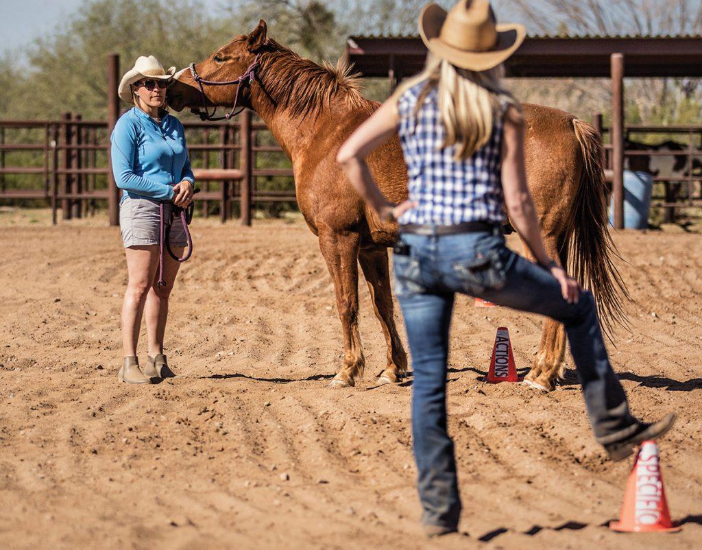 Unbridled Retreats Coaching