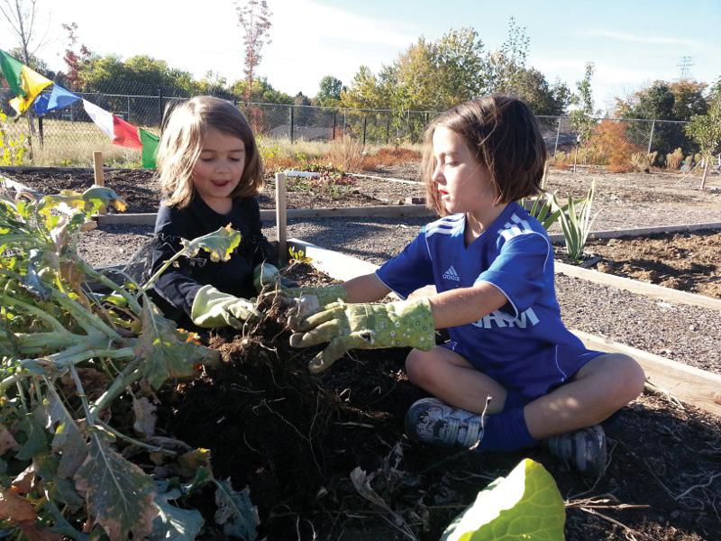Samuels Community Garden
